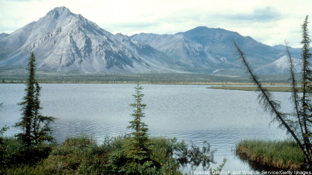 an analysis of arctic national wildlife refuge Washington – the interior department has commissioned an expedited environmental review of the impact of leasing part of the arctic national wildlife refuge for oil and gas drilling, according.