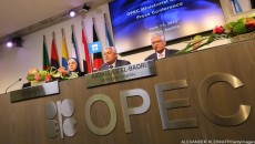 OPEC Needs To 'Wake Up' To Shale Revolution