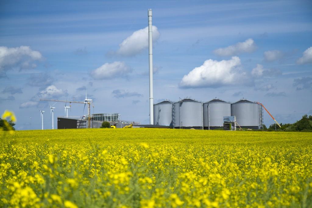 Biomass The World S Biggest Provider Of Renewable Energy