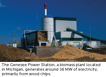 biomass-conversion---photo1---genesee-plant