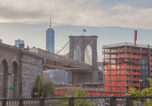 brooklyn-coned_310_217