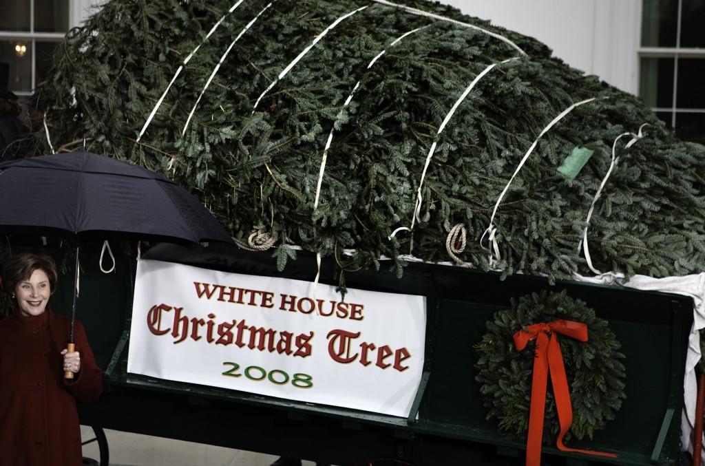 President, First Lady Attend Ceremony Debuting White House Christmas Tree